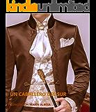 un caballero del sur (Spanish Edition)