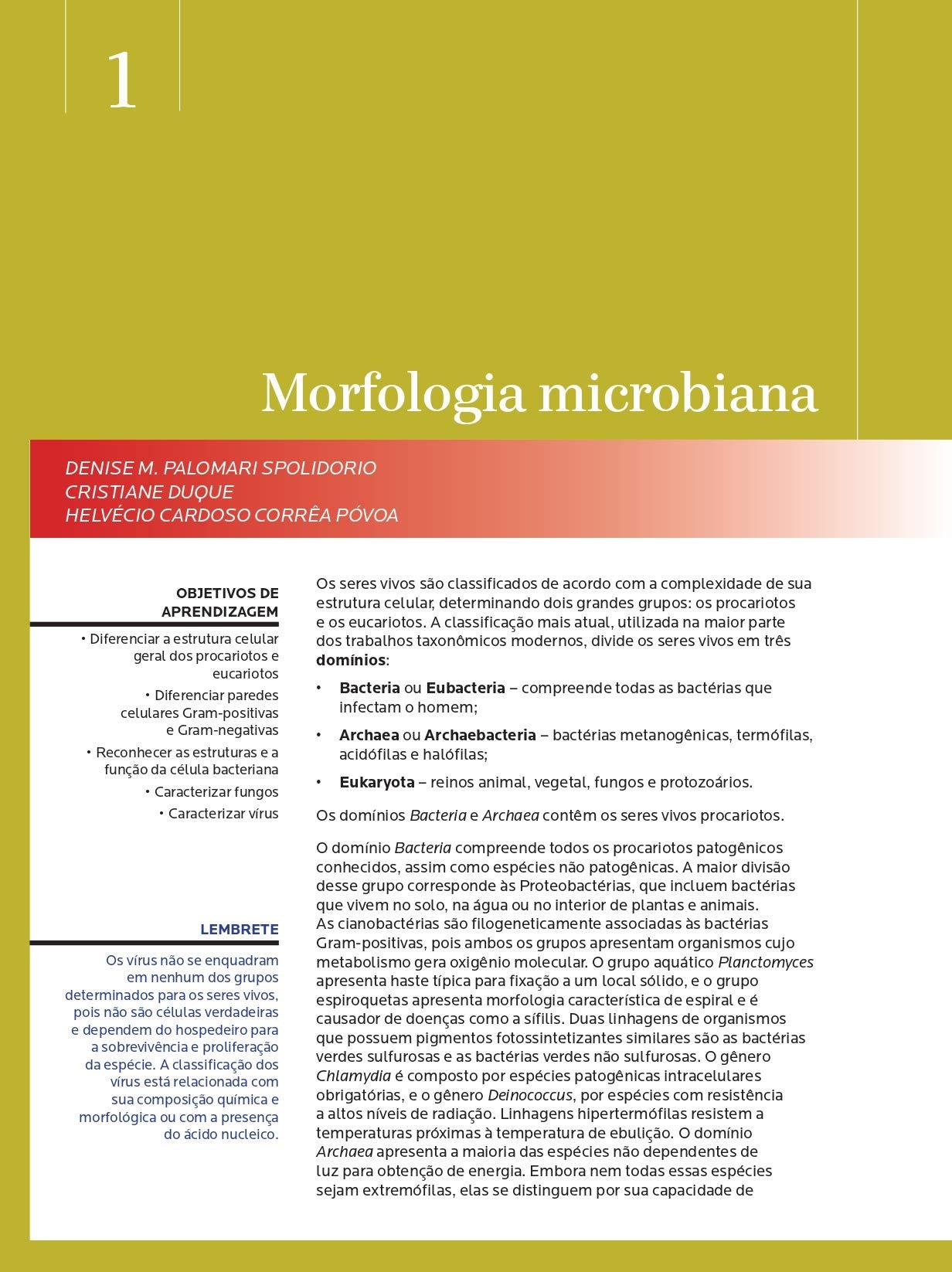 Microbiologia E Imunologia Geral E Odontologica. Abeno 7 ...