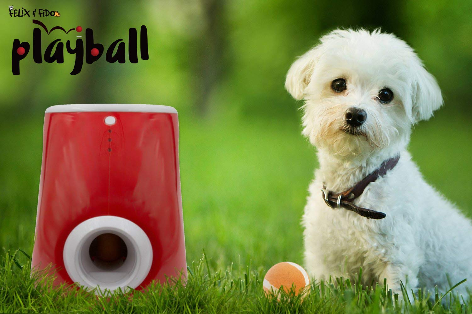 Felix & Fido Playball! Automatic Ball Launcher for Dogs. 3 Throwing Distance Settings, 3 Small Durable Tennis Balls Included, Launches Up to 20 Feet,for Indoor and Outdoor Play.for Small Dogs ONLY by Felix & Fido (Image #7)