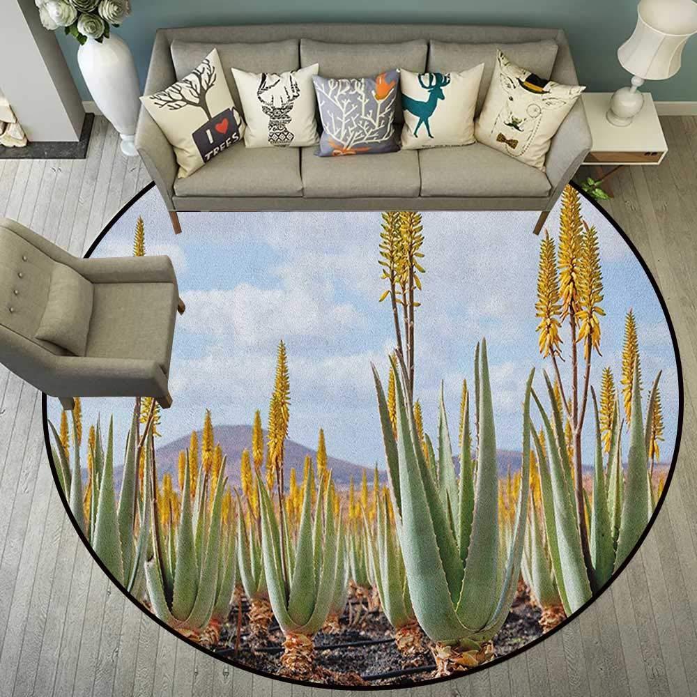 Amazon.com: Plant,Round Carpet Photo from Aloe Vera ...