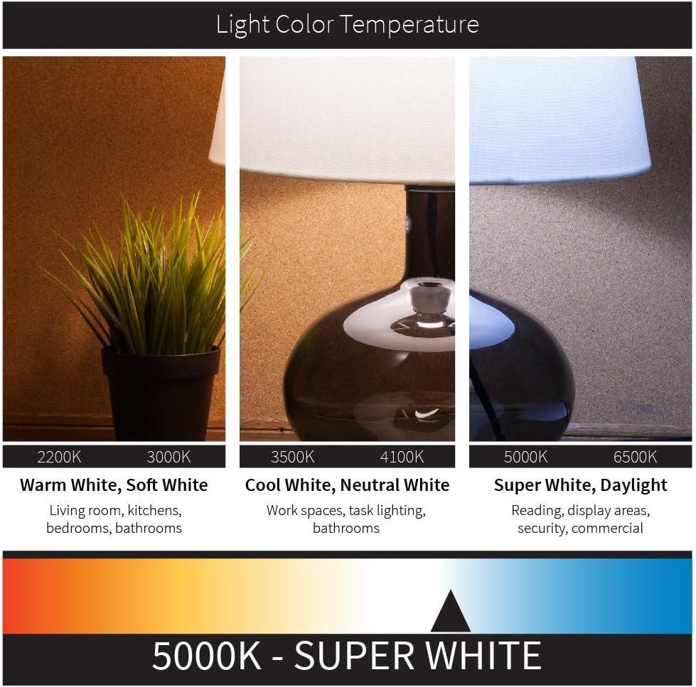 2700K Warm White 50 Watt Equivalent E26 6 Pack Sunlite LED PAR20 Reflector Bulb Dimmable Energy Star Certified Base 6 Watt Medium 450 Lumens