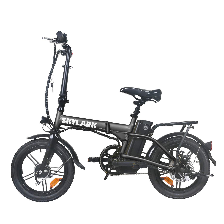 TrekPower Foldable Electric Bike 250W