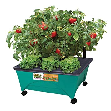 amazon com 24 1 2 in x 20 1 8 in patio garden kit with watering rh amazon com patio kitchen garden patio herb garden kit