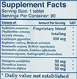 Ayush Herbs Inc Herbal Supplement, Livit-2, 90 Count