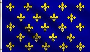 DMSE Blue Fleur De Lis Many France Royal Muti Flag 3X5 Ft Foot 100% Polyester 100D Flag UV Resistant (3' X 5' Ft Foot)