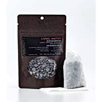 Modern ŌM Shungite Living Water Kit | Ready to Use Authentic Elite Shungite Detoxification Stone Gravel Pouch Kit for Natural Water Purification, Neutralizes Bacteria, Contains Antioxidants
