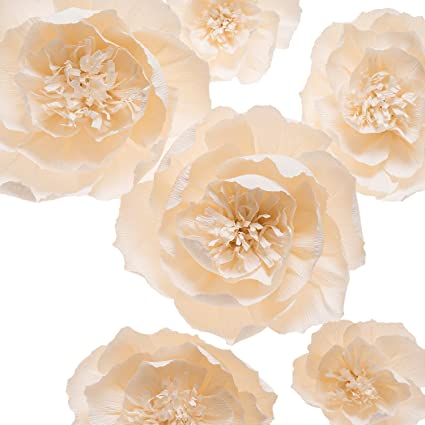 Amazon Key Spring Paper Flower Decorations Large Crepe Paper