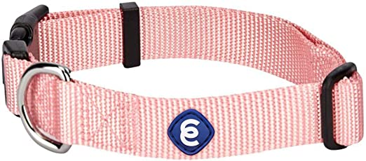 Blueberry Pet Essentials 20+ Colors Classic Dog Collars, Personalized Dog Collars