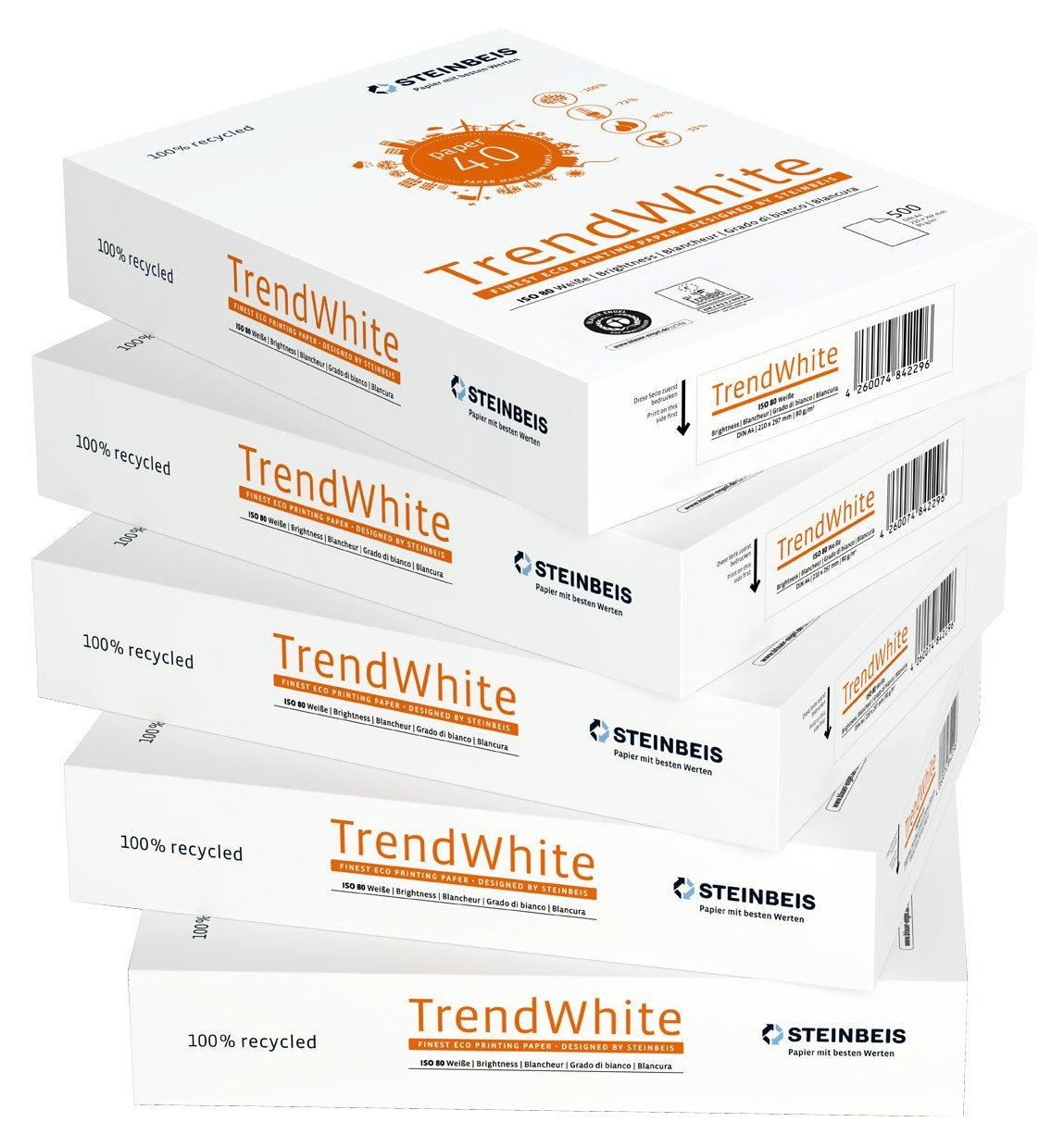 A4 Steinbeis Vision 521708010001-5 risme di carta Classic White//Trend White 80 g//m2 500 fogli