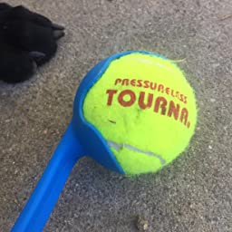 Amazon.com : Tourna Mesh Carry Bag of 18 Tennis Balls ...