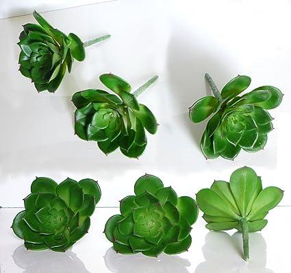 1 Sets Of 6 Pcs Artificial Plants Small Snow Lotus Artificial Plastic  Desert Unkillable Succulents Grass