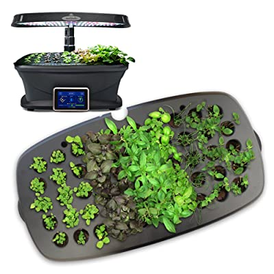 Seed Starting System by AeroGrow