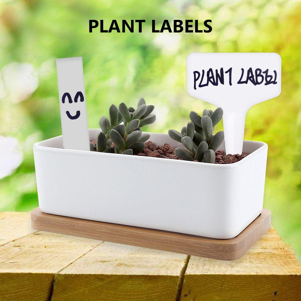 Mziart 100 Etiquetas de plástico Tipo T para Plantas ...