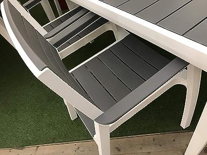 XONE - Juego Harmony de resina Keter, juego de mesa (160/240 x 100 x 74 cm de altura) y 6 sillones con molde imitación en madera + florero con maceta de Signé