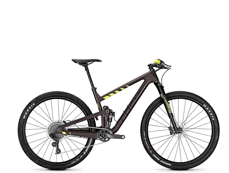 Focus MTB O1E Factory 12G - Bicicleta de montaña (29 Pulgadas ...
