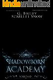 Shadowborn Academy: Year Two (Dark Fae Academy Series Book 2)