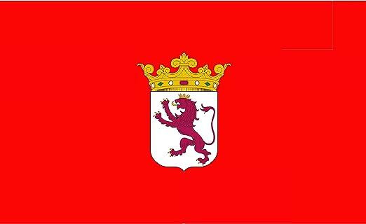 Durabol Bandera de la Provincia de León 150x90cm Flag+Regalo una pegatina: Amazon.es: Jardín