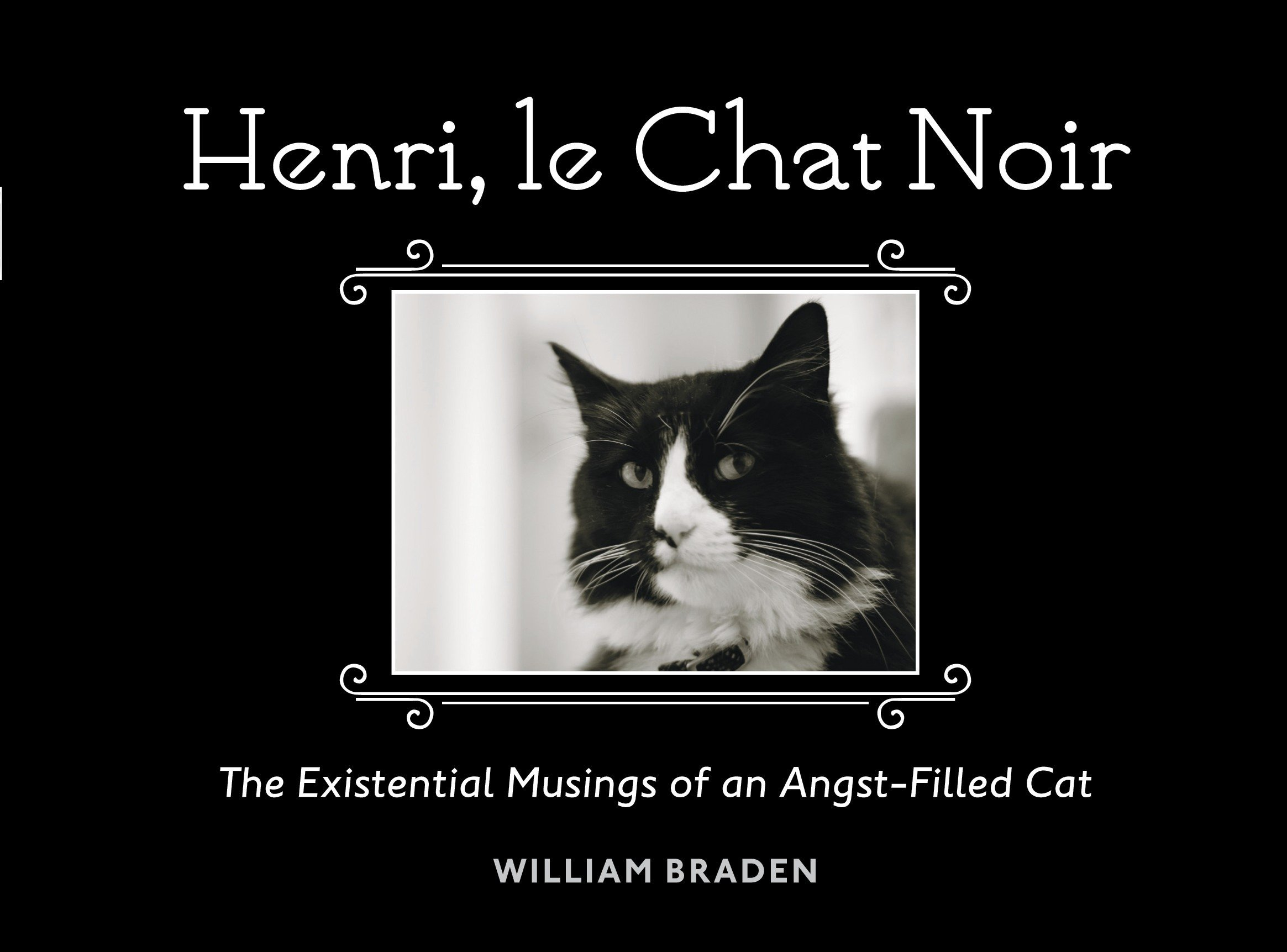 Download Henri, le Chat Noir: The Existential Musings of an Angst-Filled Cat pdf epub