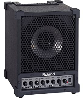 Roland Cube Monitor/PA