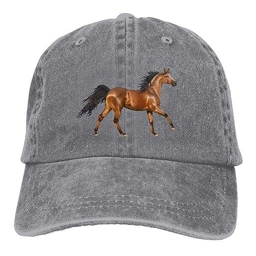 89b40e2095b Amazon.com  Arsmt 3D Horse Denim Hat Adjustable Female Cute Baseball Caps   Clothing