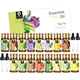 PYRRLA Essential Oils Top 16×5ML 100% Pure Therapeutic Grade Aromatherapy Oil Set with 4 Droppers (Tea-Tree,Peppermint,Lavender,Lemongrass,Cinnamon,Vanilla,Orange,Clove,Grapefruit,Patchouli,Vetiver,Clary-Sage,Myrrh,Citronella,Ylang-Ylang,Jasmine)