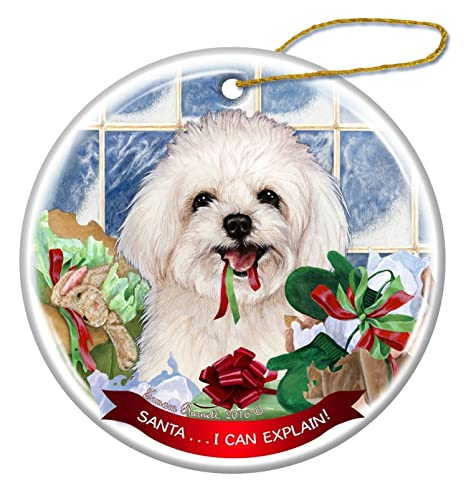 Image Unavailable. Image not available for. Color  Maltipoo Dog Porcelain  Hanging Ornament Pet Gift  Santa. 65bcb920b