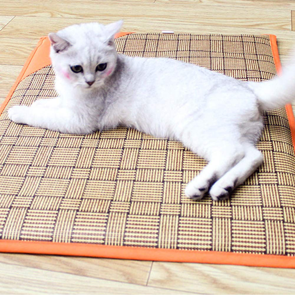 Amazon.com: fanmaosdf Pet Mat,Reversible Pet Cooling Mat ...