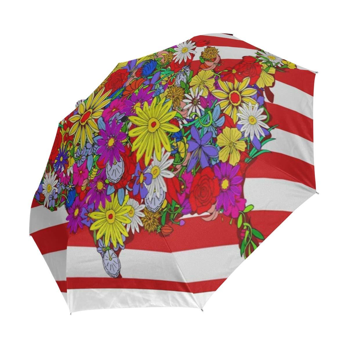 Amazon.com: Paraguas de estilo japonés, diseño de flores ...