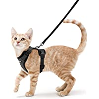 Rabbitgoo Cat Harness and Leash Set for Walking Escape Proof, Adjustable Small Vest Harnesses for Cats with 59 Inches…