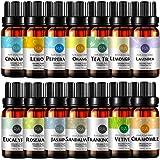 Top 14 Essential Oil Set 100% Pure Aromatherapy Essential Oil (Lavender,Jasmine,Peppermint,Vetiver,Sandalwood,Eucalyptus,Orange,Tea Tree,Lemongrass,Chamomile,Rosemary,Frankincense,Lemon,Cinnamon)