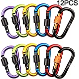 Carabiner Keychain Aluminum Alloy D Ring Keychain Screw Locking Spring Clip Hook Keyring Clip Hook Outdoor Buckle for Camping, Hiking, Fishing