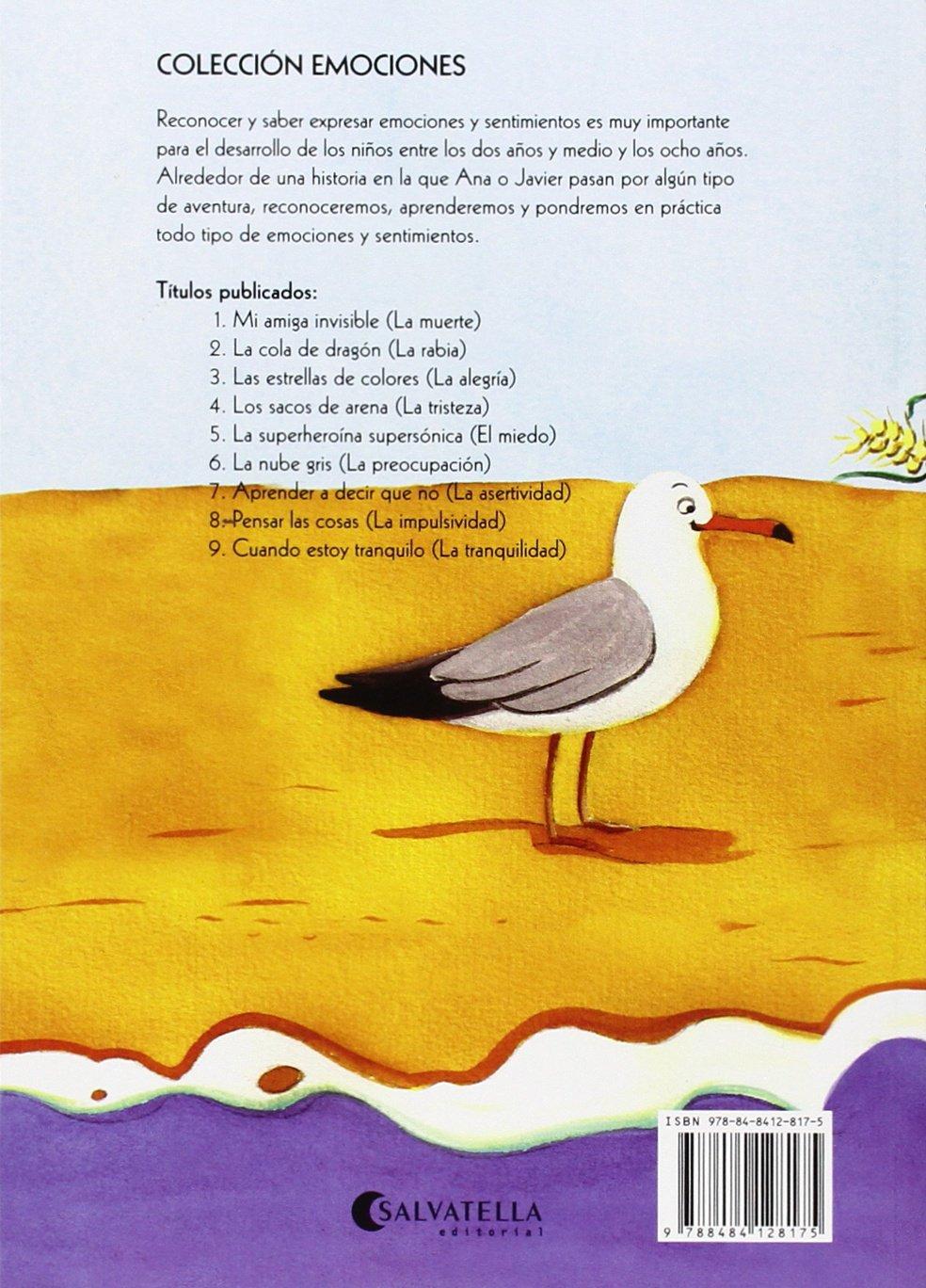 Aprender a decir que no (rústica): Mireia Canals Botines: 9788484128175: Amazon.com: Books