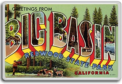 Amazon greetings from big basin redwood state park california greetings from big basin redwood state park california vintage 1940s postcard fridge magnet m4hsunfo