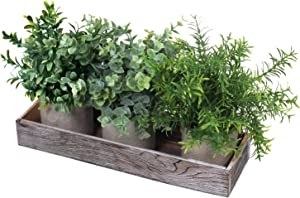 Winlyn 3 Pack Mini Potted Plants Artificial Eucalyptus Boxwood Rosemary Greenery in Pots with Wood Planter Box Faux Potted Herbs Small Houseplants