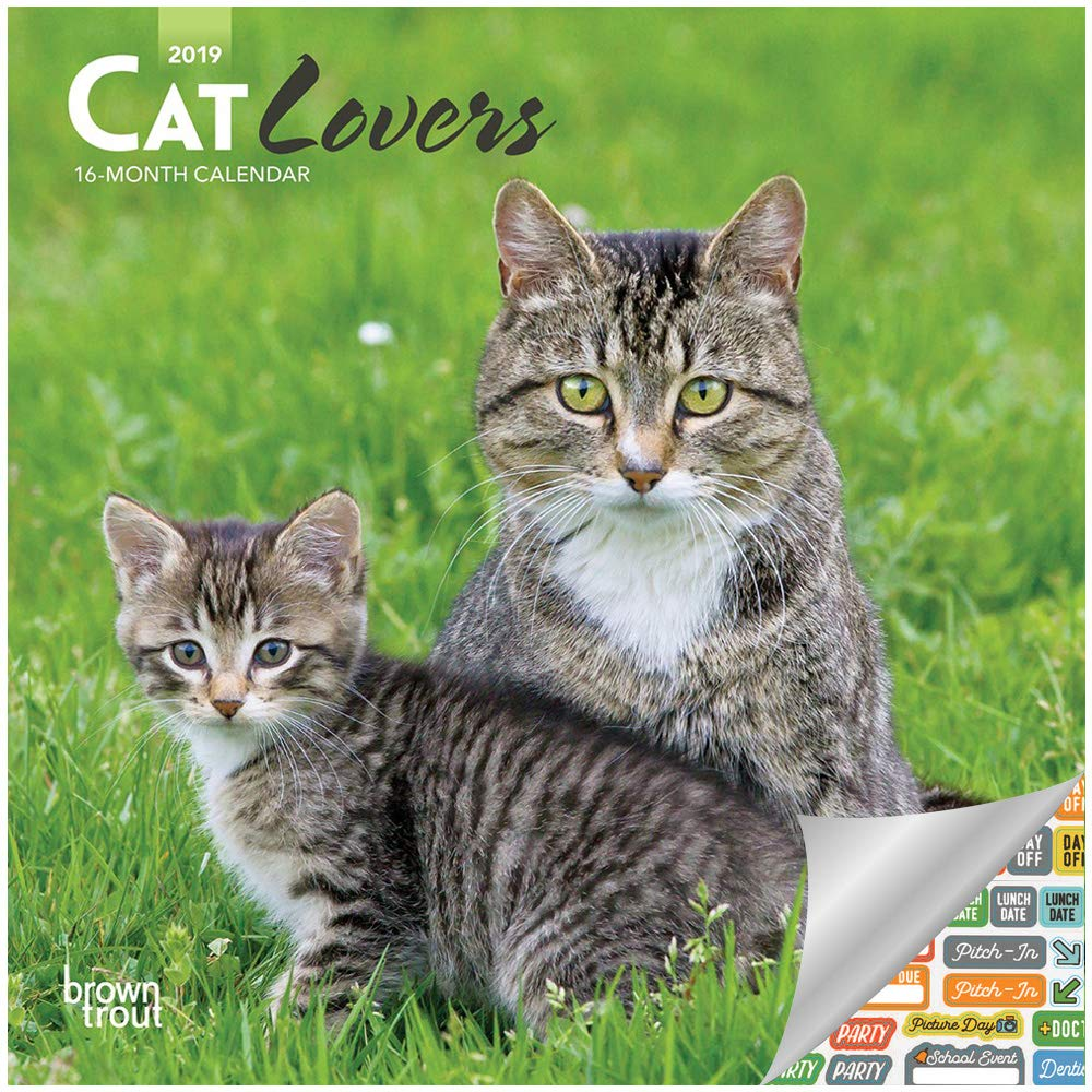 Cat Lovers dating site