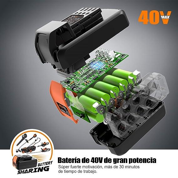 TACKLIFE Cortabordes Eléctrico, Cortabordes a Batería Li-Ion de 40V 2.5Ah, 7500RPM, Desbrozadora sin Cable con Ancho de Corte de 30cm, Motor ...