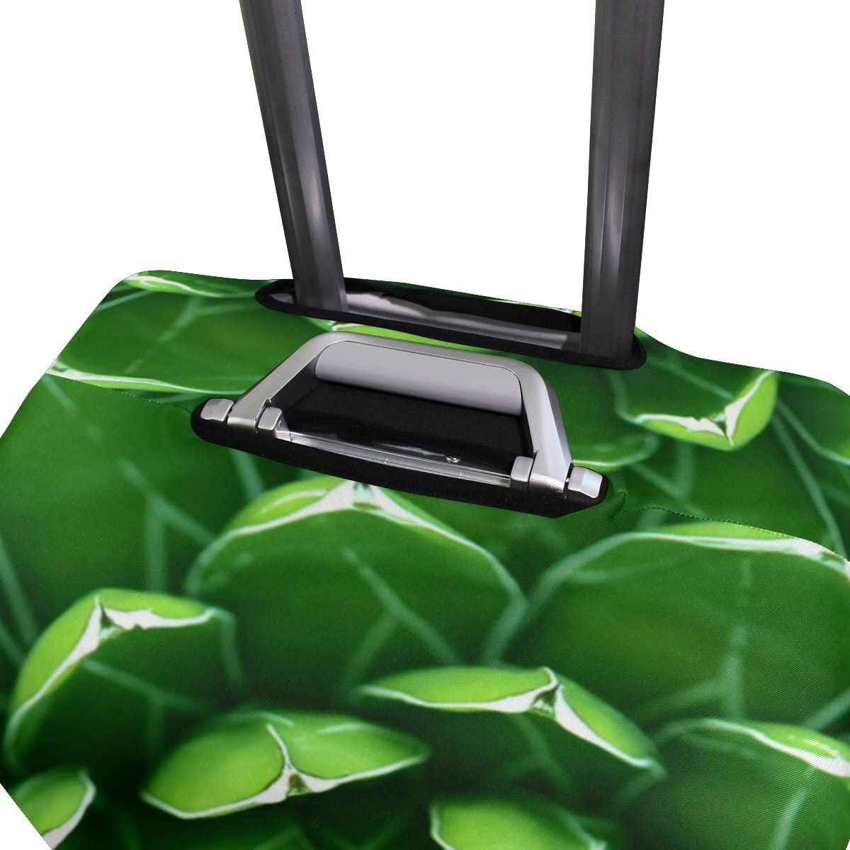 GIOVANIOR Green Cactus Luggage Cover Suitcase Protector Carry On Covers