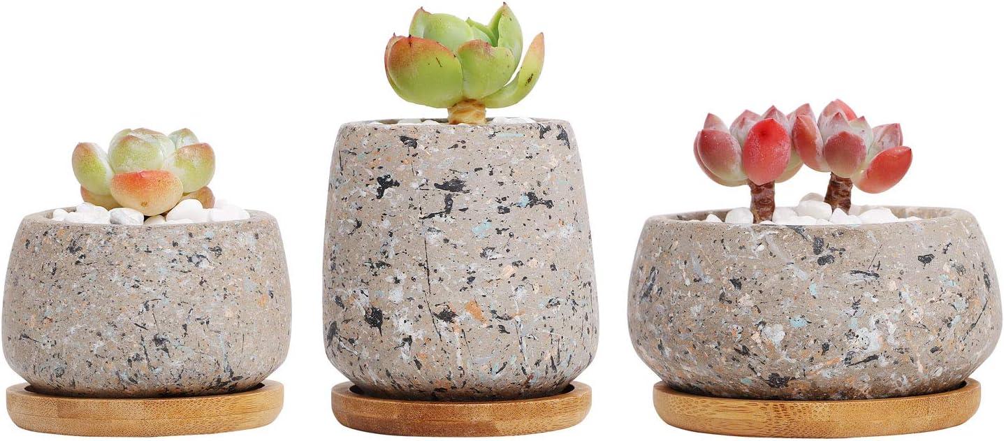 T4U Maceta de Cactus Suculenta de Cemento, Jardinera de Hormigón Maceta Contenedor Jardinera, Pequeña Olla de Barro para Plantas Flores con Bandeja de Drenaje de Bambú Decoración Conjunto de 3 Gris