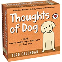 Nyc Board Of Education Calendar 2020-16 Amazon Best Sellers: Best Humor & Comic Calendars