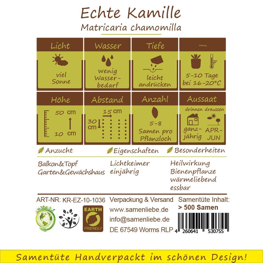 zum Eigenanbau Herkunftsland Samenliebe Echte Kamille-Samen  1000 Samen hochwertige Kr/äuter-Samen Deutschland