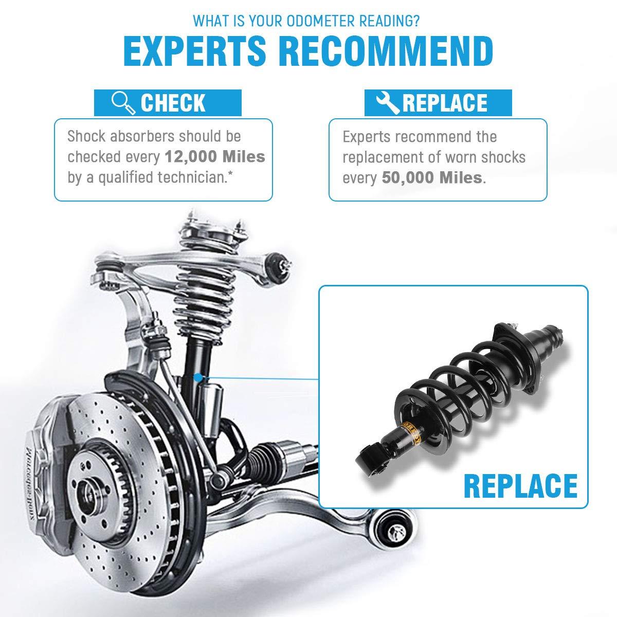 Oredy Rear Pair Complete Quick Struts Shock Coil Spring 2003 Honda Cr V Suspension Parts Diagram 1997 Front Assembly Kit Xs822135821 171380r 171380l 15146 15145 Sr4193 Sr4194 Compatible With 2002 2004 2005 2006 Automotive