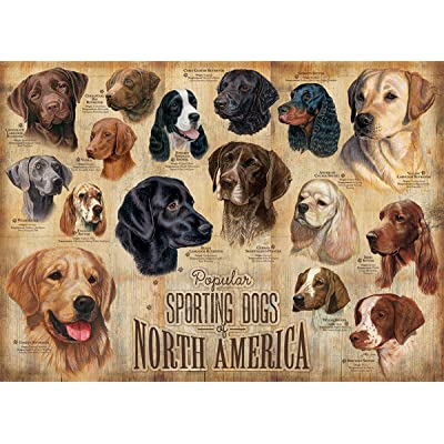 Cobblehill 80022 1000 pc Sporting Dogs Puzzle, Various: Toys & Games