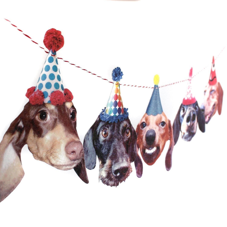 Amazon Dachshunds Birthday Party Garland Decoration