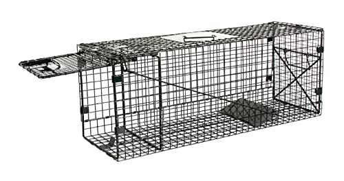 Professional Humane Live Animal Trap 28″X12″X12″ Catch Release Cage Featured Image