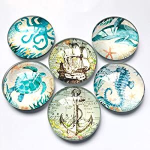 Ocean Refrigerator Magnets, set of six 4x4cm, office magnets whiteboard, magnet gifts for girls Teens classroom Locker ,whiteboard or housewarming home gifts