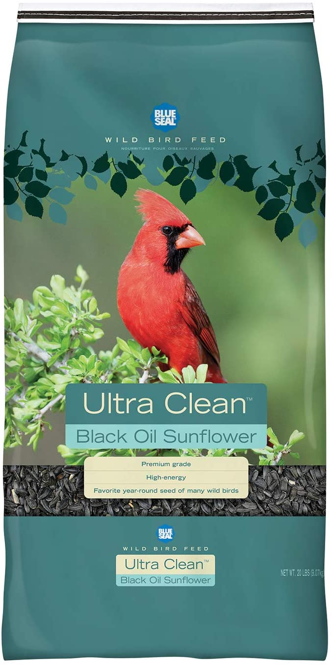 Ultra Clean Premium Black Sunflower Wild Bird Seed 4lb Bag