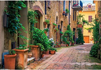 GoHeBe 7x5ft European Town Backdrop Beautiful European Town Tourist Photography Backdrop Photo Studio Background Props LYGY094