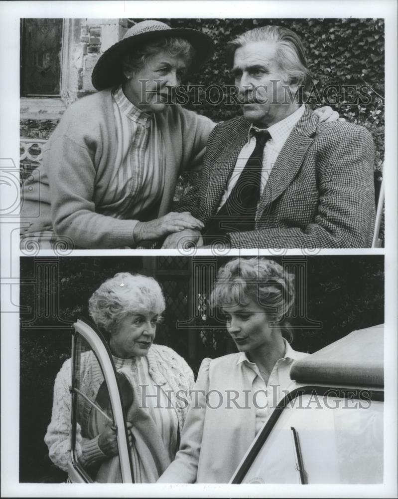Marilyn Buferd,Rosanna Roces (b. 1972) Adult archive Tori Black,Michael Thomson