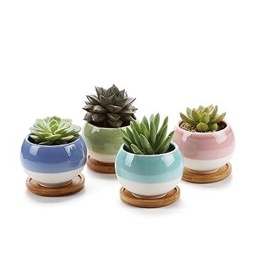 Rachelu0027s Choice 3u0026quot;Ball Shape Sets Sucuulent Cactus Plant Pots Flower  Pots Planters Containers Window