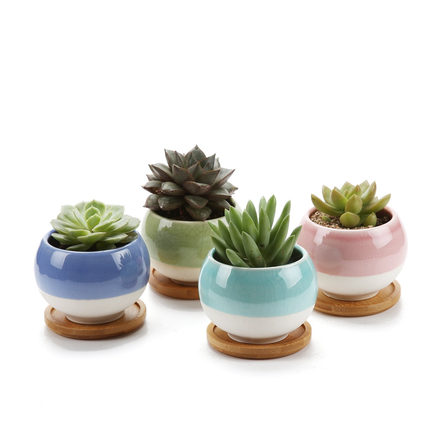 T4U 3'' Succulent Planters Pots Ceramic, Ball Shape Drainage Cactus Pots Window Boxes with Bamboo Tray, Set of 4 by T4U
